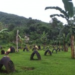 Petelinja farma, sever otoka Negrosa