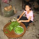 Priprava hrane, sever Laosa