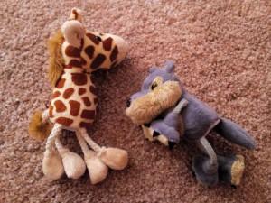 Nadenite si žirafja ušesa in poslušajte s srcem